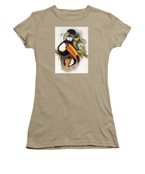 Toucan Women's T-Shirt (Junior Cut) by John Gould