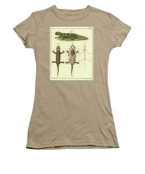 Women's T-Shirt (Junior Cut) featuring the drawing Fire Salamander Anatomy by Christian Leopold Mueller