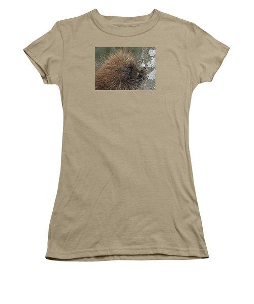Women's T-Shirt (Junior Cut) featuring the photograph Learning To Climb by Glenn Gordon