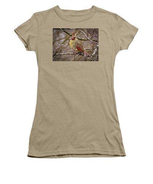 Women's T-Shirt (Junior Cut) featuring the photograph Mrs Cardinal by Douglas Stucky