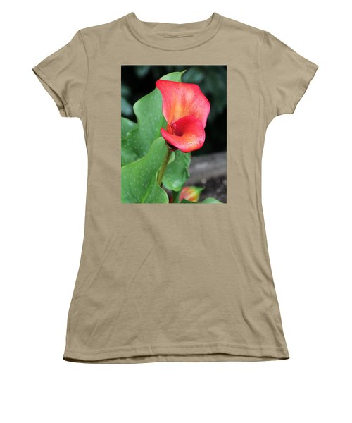 Women's T-Shirt (Junior Cut) featuring the photograph Red Calla Lily by Katie Wing Vigil