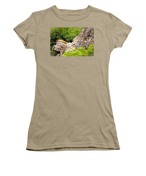Rock Chuck Women's T-Shirt (Junior Cut) by Lana Trussell