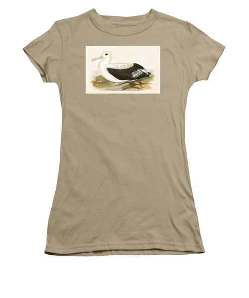 Wandering Albatross Women's T-Shirt (Junior Cut) by English School
