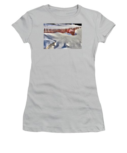 Fence Sculpture Women's T-Shirt (Athletic Fit)