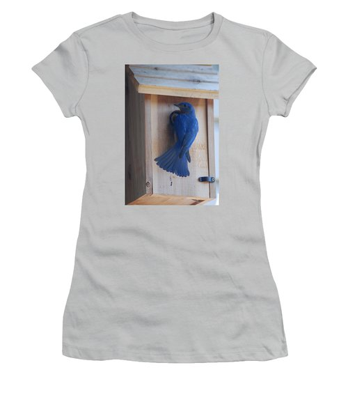 Bluebird Of Happiness Women's T-Shirt (Athletic Fit)