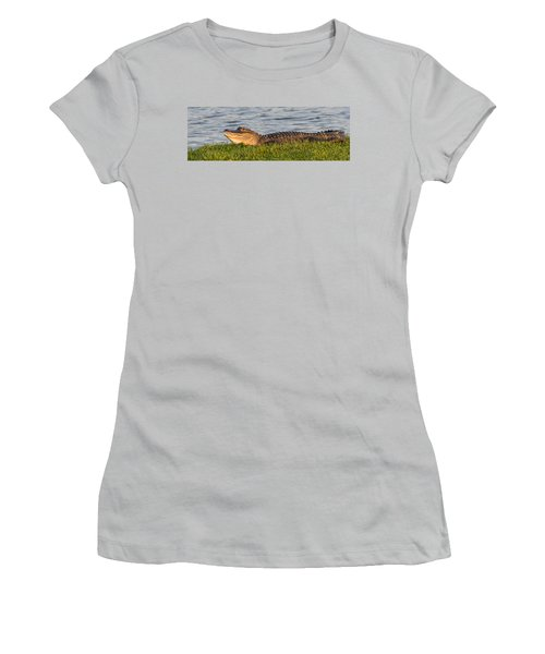 Alligator Smile Women's T-Shirt (Junior Cut) by Ed Gleichman