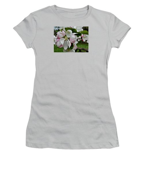 Apple Blossoms 2 Women's T-Shirt (Athletic Fit)
