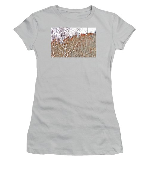 Women's T-Shirt (Junior Cut) featuring the photograph Autumn Sycamores by Bruce Patrick Smith