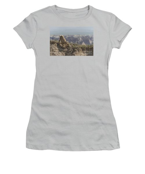 Baby Bighorn In The Badlands Women's T-Shirt (Athletic Fit)