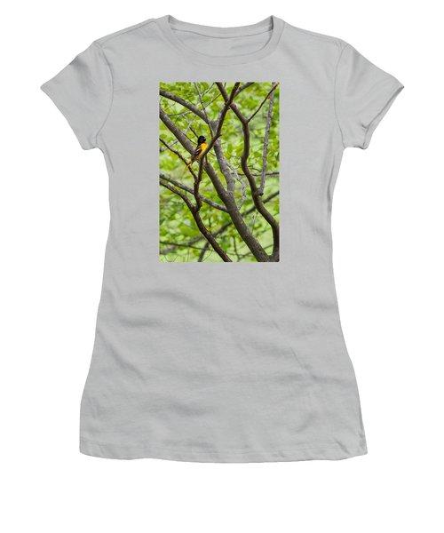 Baltimore Oriole Women's T-Shirt (Junior Cut) by Bill Wakeley