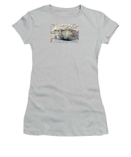 Camo Cat Women's T-Shirt (Athletic Fit)