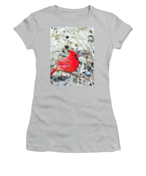 Cardinal Bird Christmas Card Women's T-Shirt (Athletic Fit)