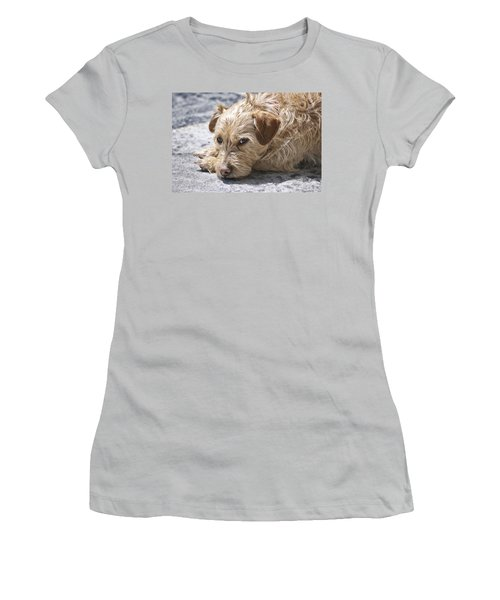 Women's T-Shirt (Junior Cut) featuring the photograph Cruz You Looking At Me by Thomas Woolworth