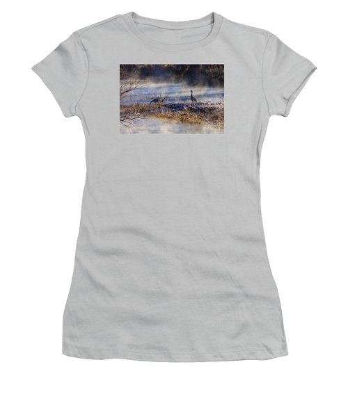 Geese Taking A Break Women's T-Shirt (Junior Cut) by Jennifer White