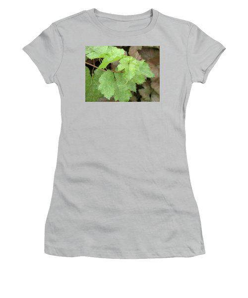 Women's T-Shirt (Junior Cut) featuring the photograph Grapevine by Laurel Powell