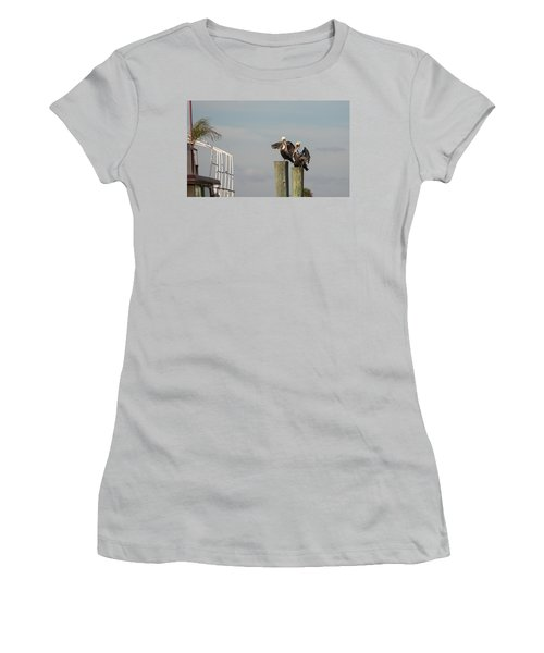 Pelican Buddies Women's T-Shirt (Junior Cut) by John M Bailey
