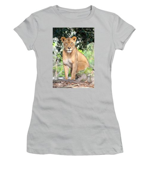 Portrait Of A Proud Lioness Women's T-Shirt (Junior Cut) by Richard Bryce and Family