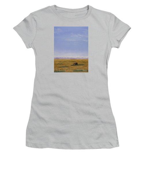Roadside Attraction Women's T-Shirt (Junior Cut) by Jack Malloch