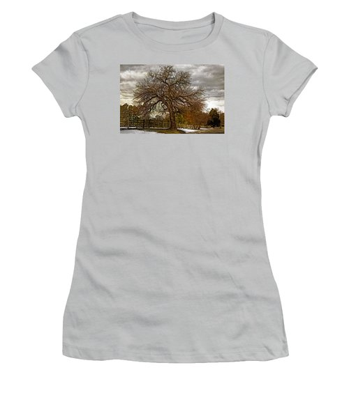 The Welcome Tree Women's T-Shirt (Junior Cut) by Jerry Gammon