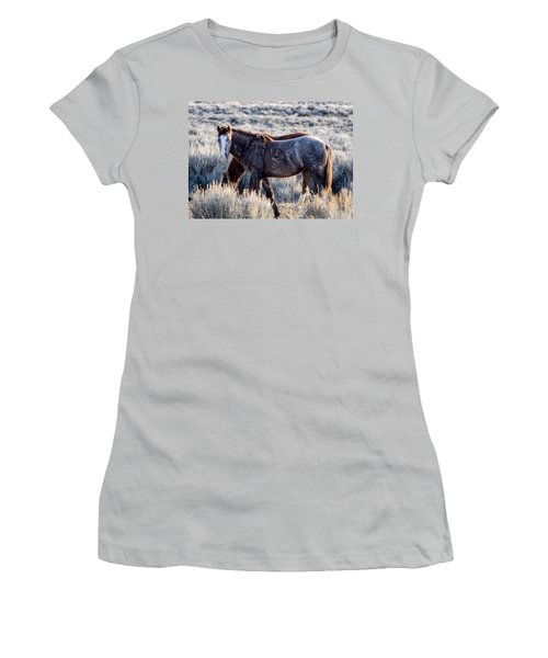 Velvet - Young Colt In Sand Wash Basin Women's T-Shirt (Junior Cut) by Nadja Rider