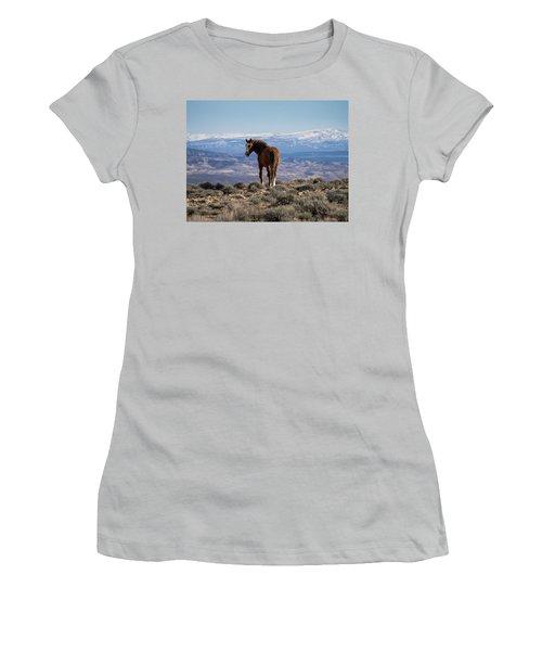 Wild Stallion Of Sand Wash Basin Women's T-Shirt (Junior Cut) by Nadja Rider
