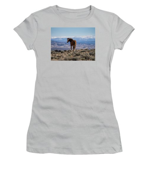 Wild Stallion Of Sand Wash Basin Women's T-Shirt (Athletic Fit)