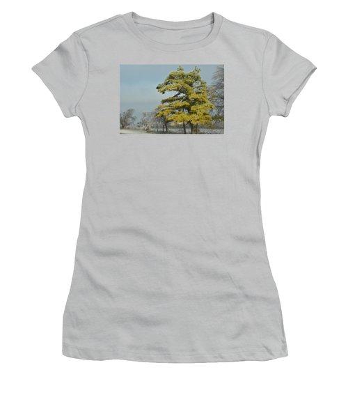 Women's T-Shirt (Junior Cut) featuring the photograph Winter Landscape by Debra Martz