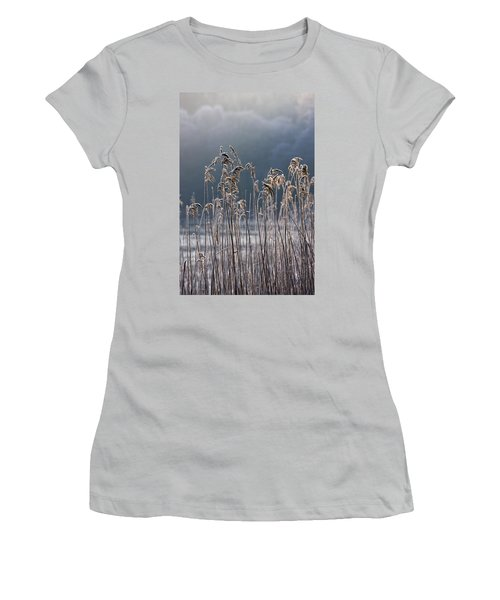 Frozen Reeds At The Shore Of A Lake Women's T-Shirt (Junior Cut) by John Short