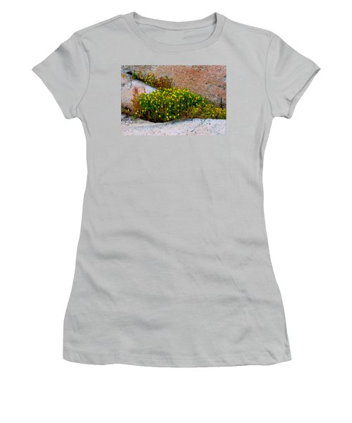 Growing In The Cracks Women's T-Shirt (Junior Cut) by Brent L Ander