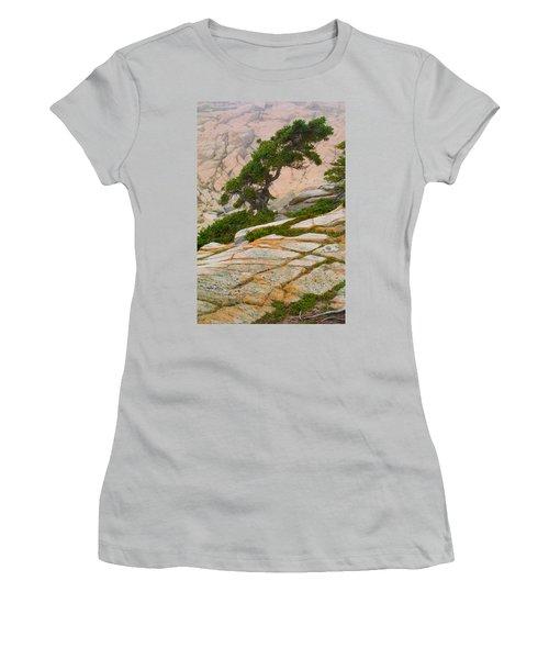 Women's T-Shirt (Junior Cut) featuring the photograph Schoodic Cliffs by Brent L Ander
