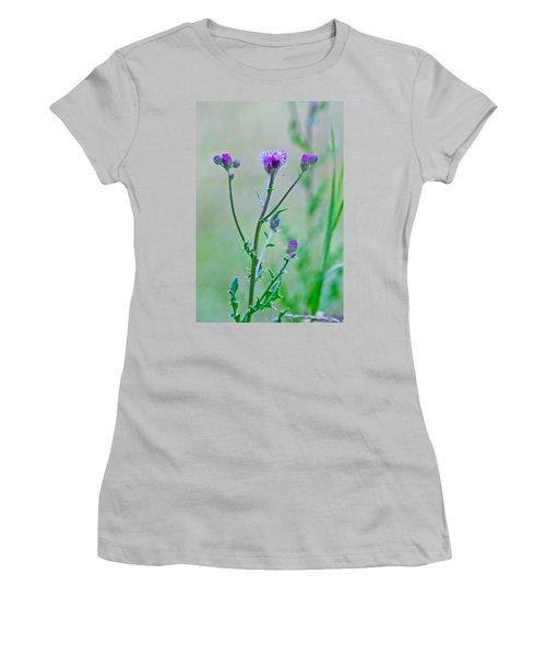 Thistledown Pastel Passion Women's T-Shirt (Athletic Fit)