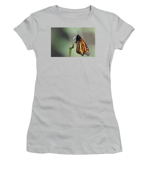 Monarch Butterfly Stony Brook New York Women's T-Shirt (Junior Cut) by Bob Savage