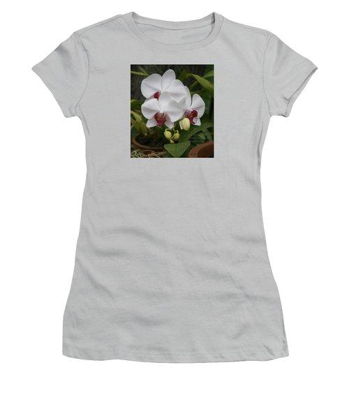 Orchid Women's T-Shirt (Junior Cut) by Christian Zesewitz