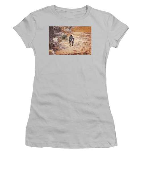 Women's T-Shirt (Athletic Fit) featuring the photograph American Pitbull  by Peter Lakomy