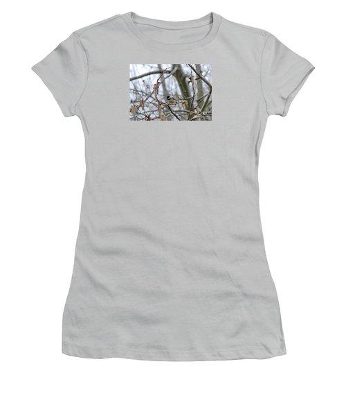 Black-capped Chickadee 20120321_38a Women's T-Shirt (Junior Cut) by Tina Hopkins