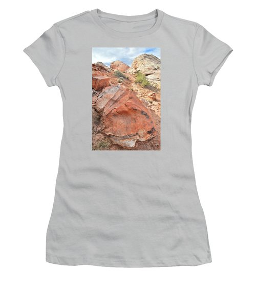 Canyon Of Color In Valley Of Fire Women's T-Shirt (Junior Cut) by Ray Mathis