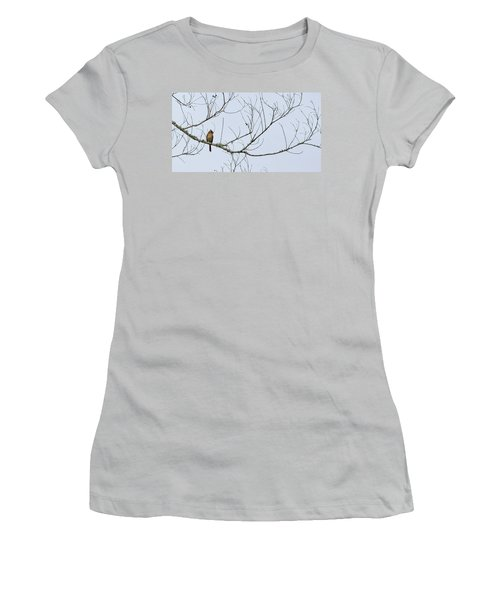 Women's T-Shirt (Junior Cut) featuring the photograph Cardinal In Tree by Richard Rizzo