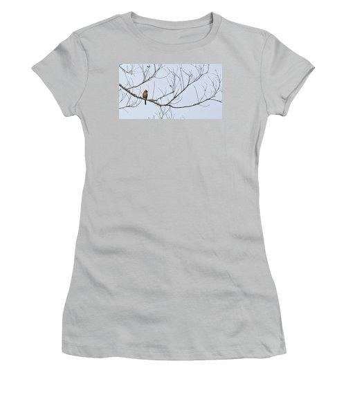 Cardinal In Tree Women's T-Shirt (Junior Cut) by Richard Rizzo