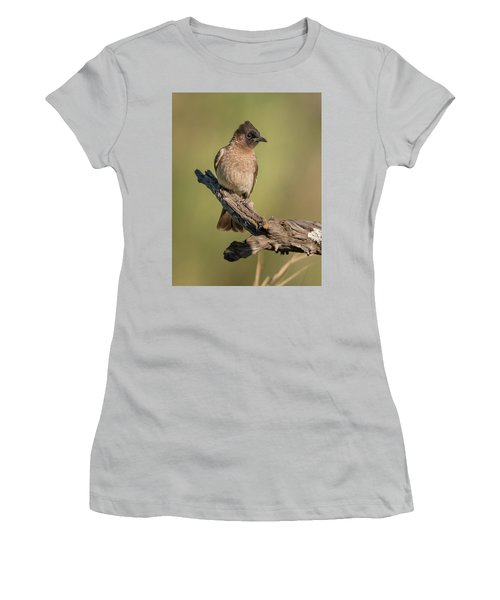 Dark-capped Bulbul Women's T-Shirt (Athletic Fit)