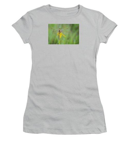 Dewy Dragon Women's T-Shirt (Athletic Fit)