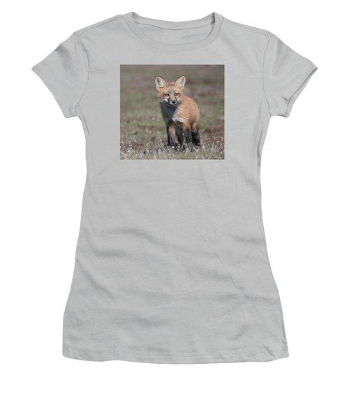 Fox Kit Women's T-Shirt (Junior Cut) by Elvira Butler