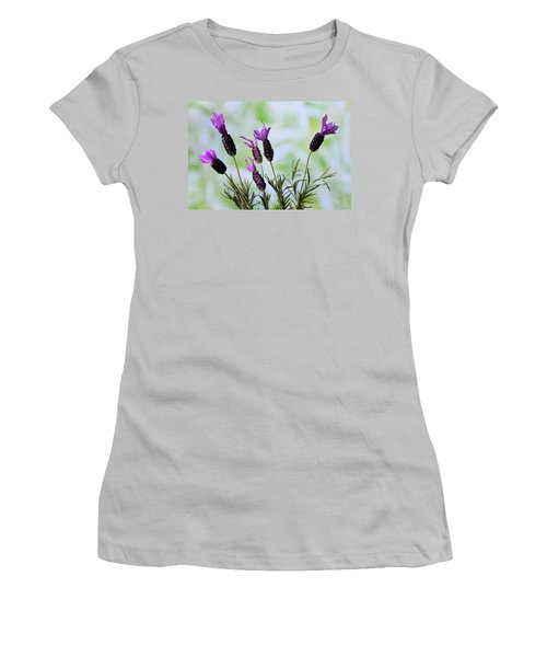 Women's T-Shirt (Junior Cut) featuring the photograph French Lavender by Terence Davis