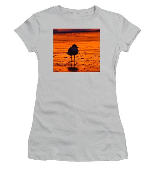 Gull Caught At Sunrise Women's T-Shirt (Athletic Fit)