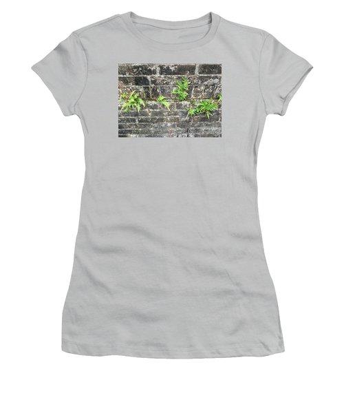 Intrepid Ferns Women's T-Shirt (Junior Cut) by Kim Nelson