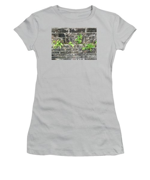 Intrepid Ferns Women's T-Shirt (Athletic Fit)