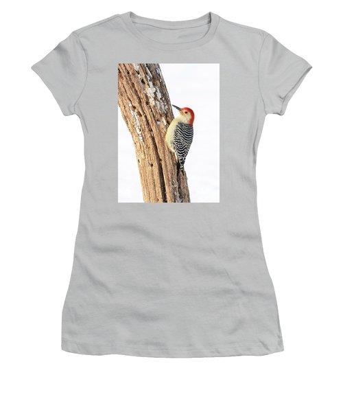 Male Red-bellied Woodpecker Women's T-Shirt (Junior Cut) by Paul Miller