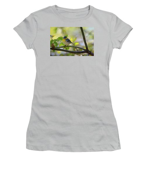 Northern Parula Women's T-Shirt (Junior Cut) by Gary Hall