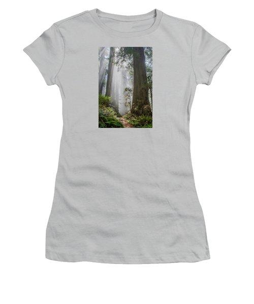 Path Through The Light Women's T-Shirt (Junior Cut) by Greg Nyquist