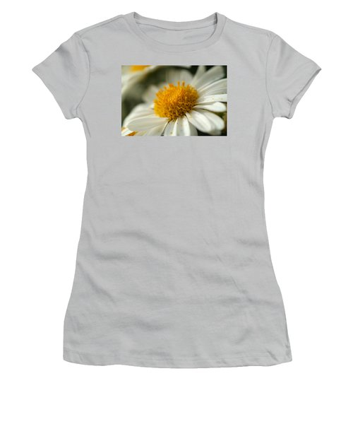 Petals And Pollen Women's T-Shirt (Athletic Fit)