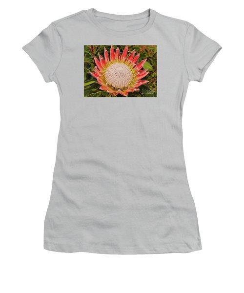 Protea I Women's T-Shirt (Junior Cut) by Cassandra Buckley